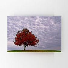 Tepedeki Kırmızı Yapraklı Ağaç Tablosu