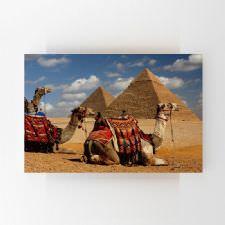 Piramitlerin Önünde Konaklayan Develer Tablosu