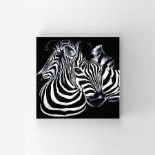 Zebra İllustrasyonu Tablosu