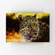Kruger Çita Tablosu