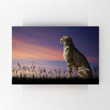Gün Batımında Oturan Çita Tablosu