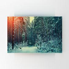 Karla Kaplı Çam Ağaçları Tablosu