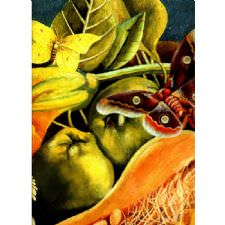 Frida Kahlo - Nature Morte Tablosu