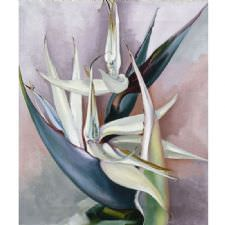 Georgia OKeeffe - White Bird of Paradise Tablosu