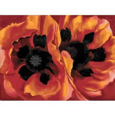 Georgia OKeeffe - Oriental Poppies Tablosu